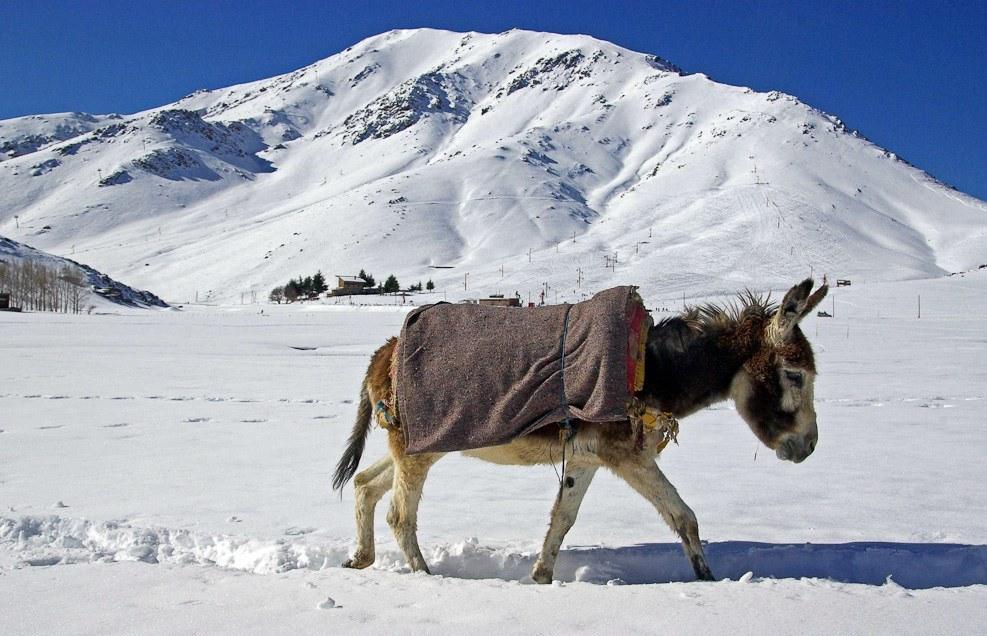 esqui toubkal (4)