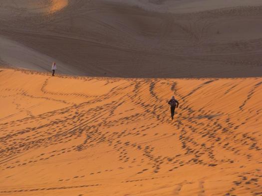 Sahara 2018-19 (12)