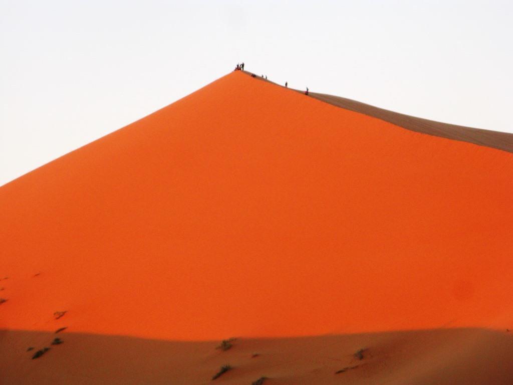 Sahara 2018-19 (8)
